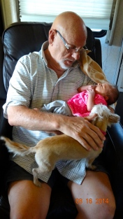 Russ took care of Carolyn a few times in the RV. Georgie was very curious.